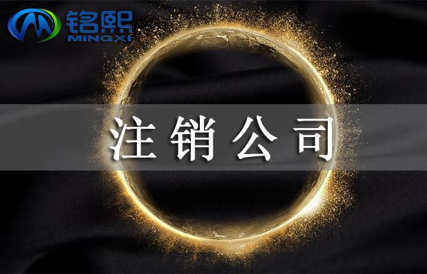 广州公司注销的流程和费用